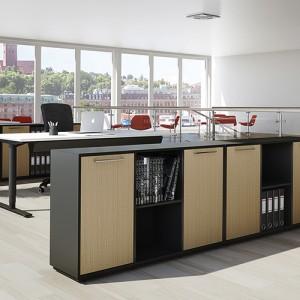 Delta - kontoropbevaring - skabe