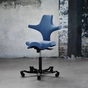 Haag-Capisco- Kontorstol- arbejdsstol – ergonomi – skrivebordsstol