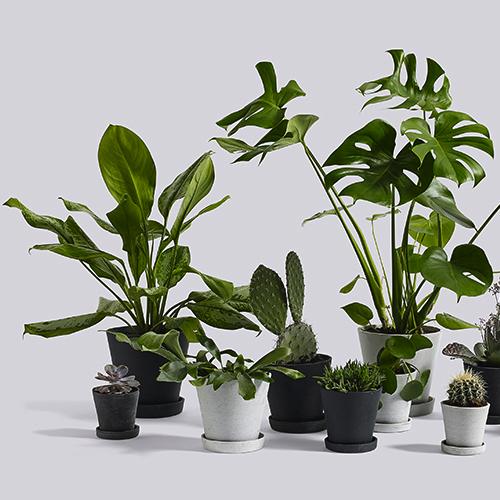 HAY - Kontortilbehoer - Kontormoebler - Flowerpot